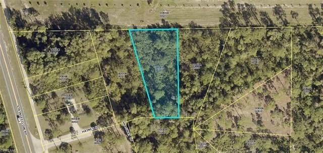 5054 Haines Ct, St. James City, FL 33956 (#219061006) :: Southwest Florida R.E. Group Inc