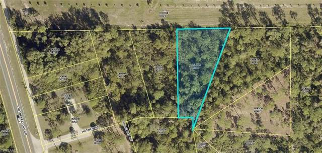 5050 Haines Ct, St. James City, FL 33956 (MLS #219061013) :: The Naples Beach And Homes Team/MVP Realty