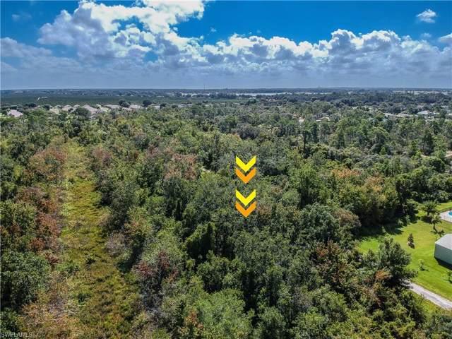 3019 Cacao Rd, Lake Placid, FL 33852 (MLS #219065472) :: Clausen Properties, Inc.