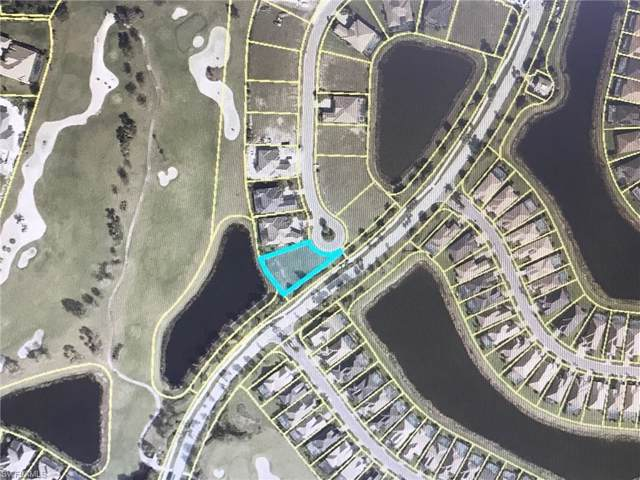 13501 Torrey Way, Fort Myers, FL 33905 (#219070823) :: Southwest Florida R.E. Group Inc