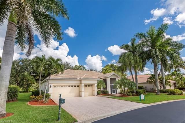 14531 New Hampton Pl, Fort Myers, FL 33912 (#219070968) :: The Dellatorè Real Estate Group