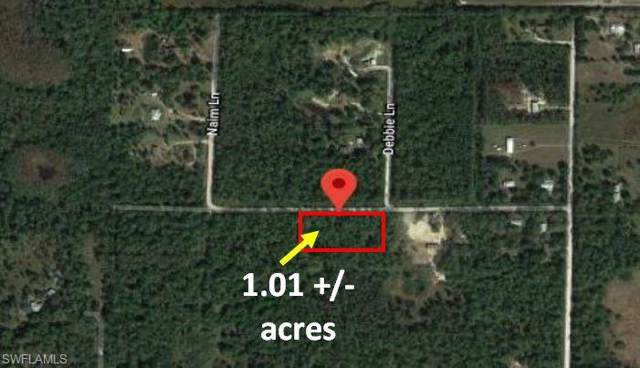 Wright Ave, Labelle, FL 33935 (MLS #219072298) :: RE/MAX Realty Team