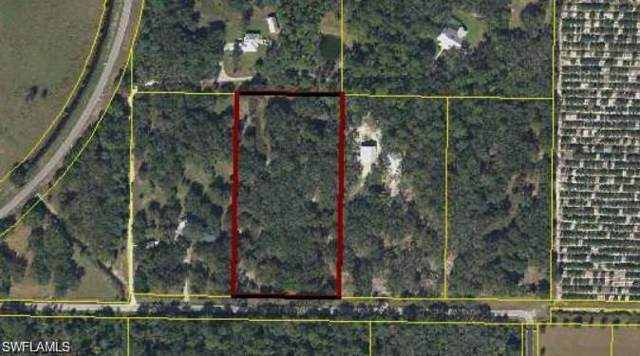 5940 Hidden Hammock Dr, FORT DENAUD, FL 33935 (#219073106) :: The Dellatorè Real Estate Group