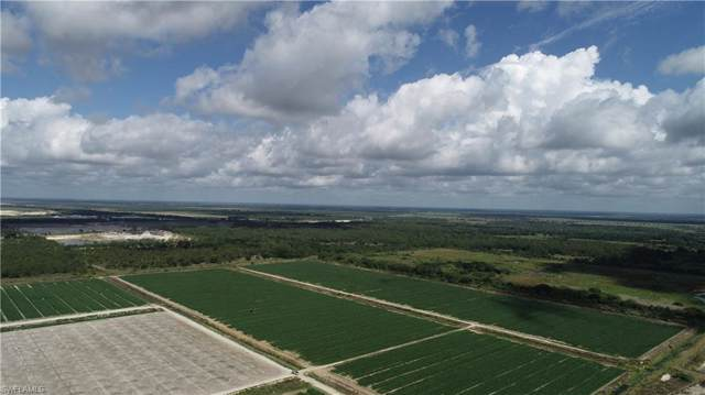 43510 Neal Rd, Punta Gorda, FL 33982 (#219076497) :: The Dellatorè Real Estate Group