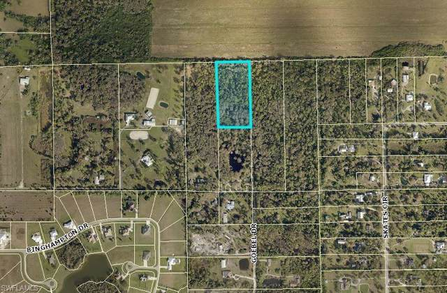 4190 Goebel Rd, Fort Myers, FL 33905 (MLS #219076642) :: Team Swanbeck