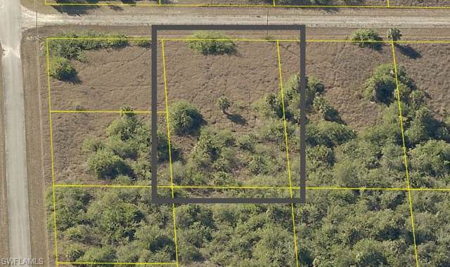 1602 Wells Ave, Lehigh Acres, FL 33972 (MLS #219077253) :: Palm Paradise Real Estate