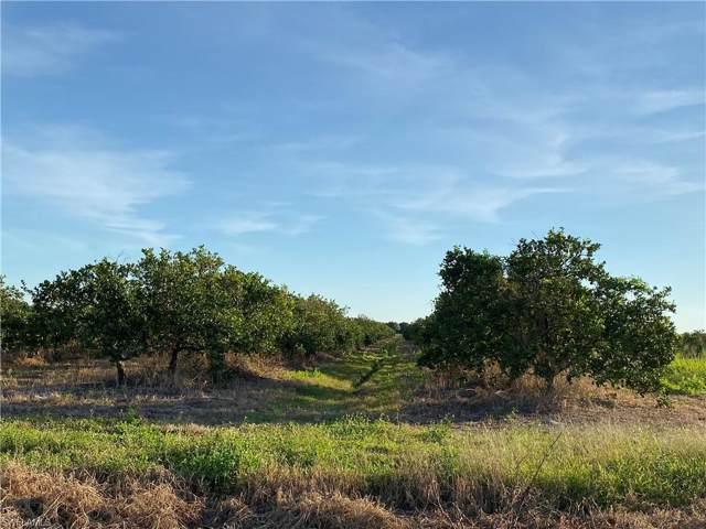 5500 1st Rd, Labelle, FL 33935 (#220001135) :: The Dellatorè Real Estate Group