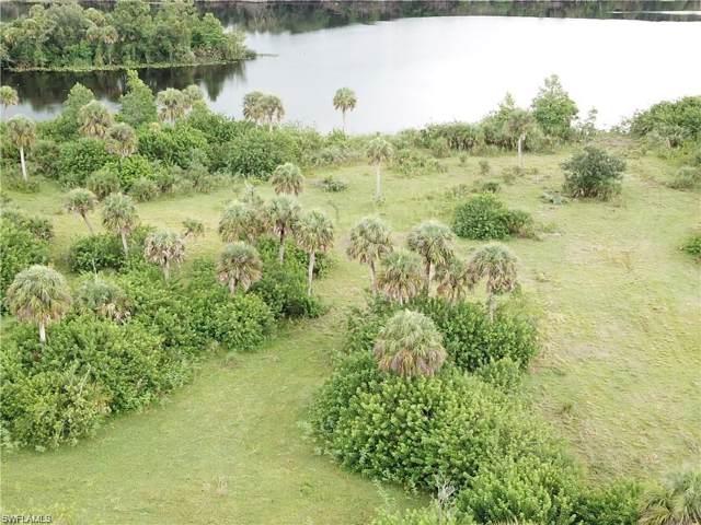 18301 S River Rd, Alva, FL 33920 (#220002268) :: The Dellatorè Real Estate Group