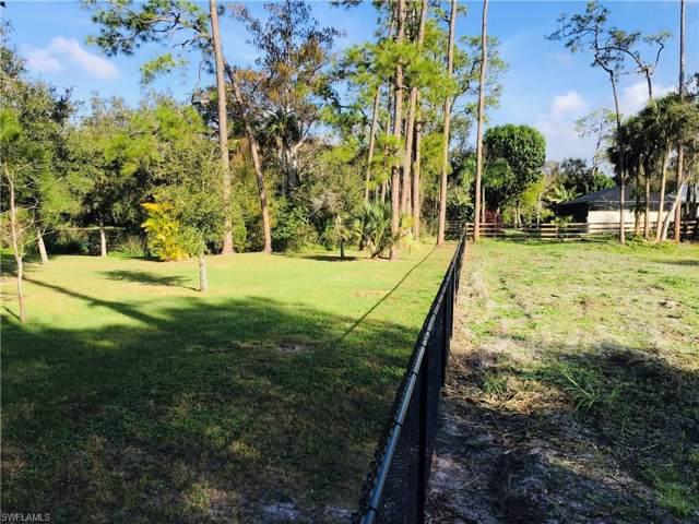 18511 Telegraph Creek Ln, Alva, FL 33920 (MLS #220005225) :: RE/MAX Realty Team