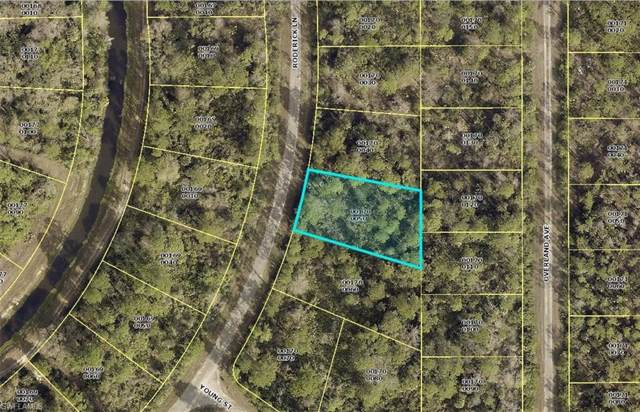 1952 Roderick Ln, Lehigh Acres, FL 33972 (MLS #220005396) :: Clausen Properties, Inc.