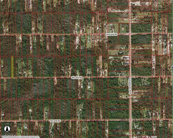 20th Ave NE, Naples, FL 34120 (MLS #220005770) :: Clausen Properties, Inc.