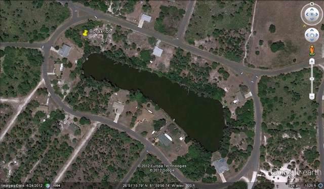 12139 Borax Ave, Punta Gorda, FL 33955 (MLS #220006390) :: Clausen Properties, Inc.