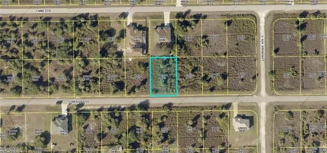 729 Camilla St E, Lehigh Acres, FL 33974 (#220006841) :: Southwest Florida R.E. Group Inc