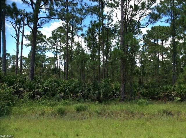 539 Appaloosa Ave, Clewiston, FL 33440 (MLS #220014579) :: Clausen Properties, Inc.