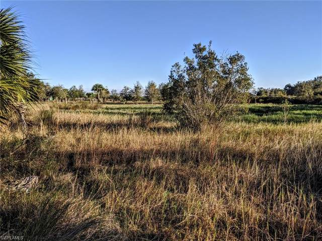 7845 Coffey Rd, Moore Haven, FL 33471 (MLS #220015490) :: Clausen Properties, Inc.