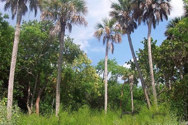 151 Swallow Dr, Upper Captiva, FL 33924 (MLS #220016197) :: Clausen Properties, Inc.