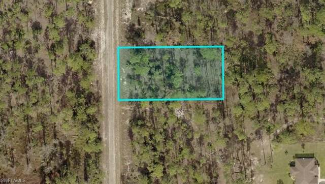 1212 Grant Ave, Lehigh Acres, FL 33974 (MLS #220016432) :: #1 Real Estate Services