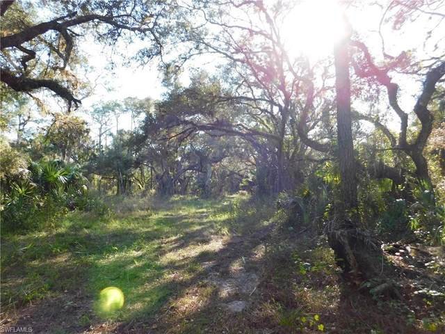 TBD Orange River Rd, Fort Myers, FL 33905 (#220023386) :: We Talk SWFL