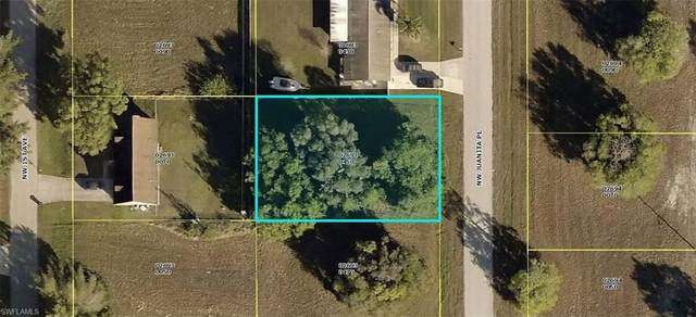 1630 NW Juanita Pl, Cape Coral, FL 33993 (MLS #220023530) :: Palm Paradise Real Estate