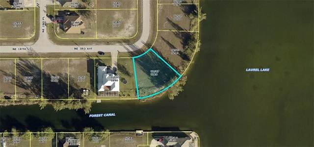 230 NE 18th St, Cape Coral, FL 33909 (MLS #220024423) :: The Naples Beach And Homes Team/MVP Realty