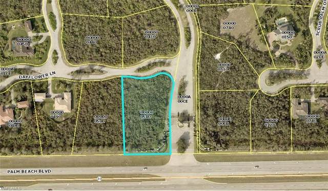 22948 Dayflower Lane, Alva, FL 33920 (#220026022) :: The Michelle Thomas Team