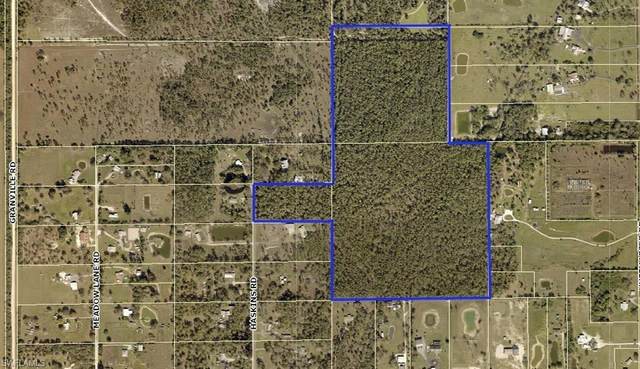 20350 Haskins Drive, North Fort Myers, FL 33917 (MLS #220026469) :: Clausen Properties, Inc.