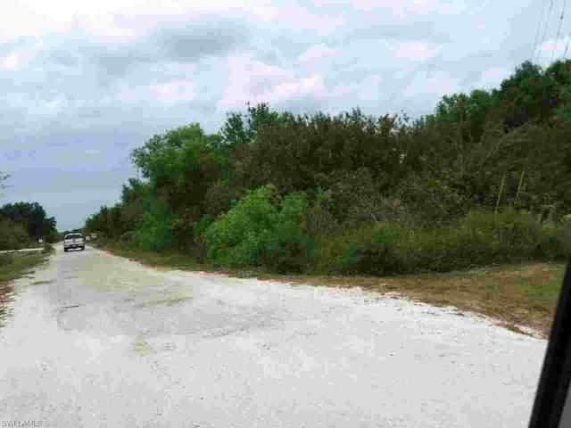 4996 Loblolly Bay Road, Labelle, FL 33935 (MLS #220026772) :: RE/MAX Realty Team