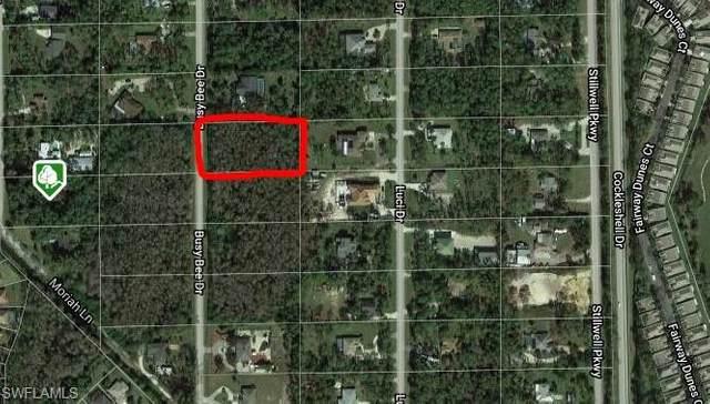 25483 Busy Bee Drive, Bonita Springs, FL 34135 (MLS #220028239) :: Wentworth Realty Group