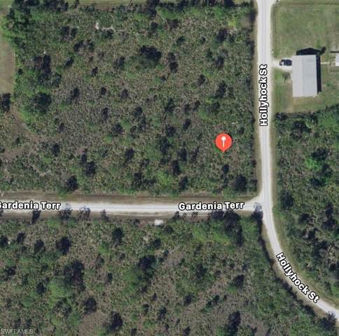 27320 Gardenia Terrace, Punta Gorda, FL 33955 (#220031039) :: Caine Premier Properties