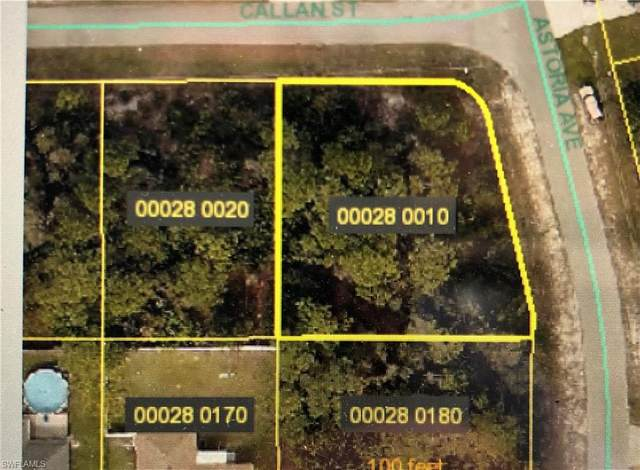 14250 Callan Street, Fort Myers, FL 33905 (#220031215) :: Caine Premier Properties