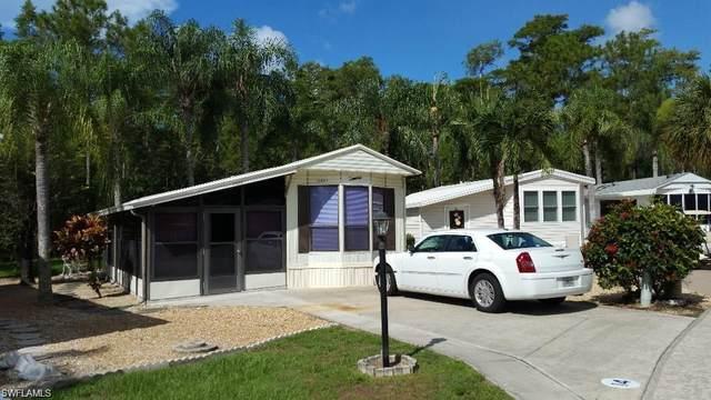 10927 Brown Pelican Circle, Estero, FL 33928 (MLS #220033191) :: Team Swanbeck