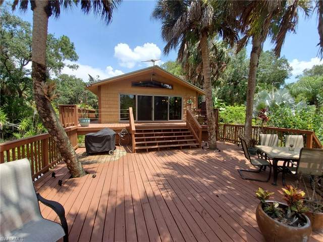3781 Bateman Road, Alva, FL 33920 (MLS #220033790) :: Team Swanbeck