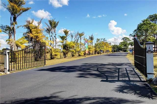 3620 Pink Ibis Drive, St. James City, FL 33956 (MLS #220033845) :: Florida Homestar Team