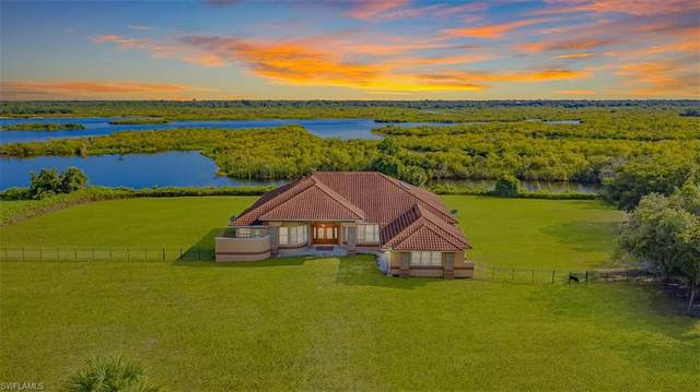 37461 Washington Loop Road, Punta Gorda, FL 33982 (#220037970) :: Caine Premier Properties