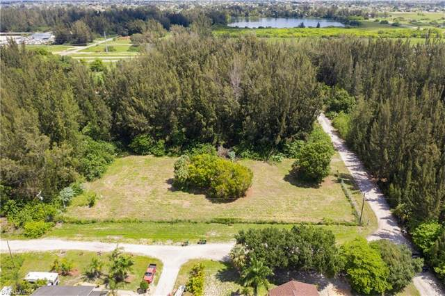 1711 Wade Drive, Cape Coral, FL 33991 (MLS #220038273) :: Florida Homestar Team