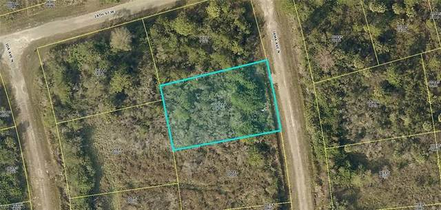 2607 Irma Avenue N, Lehigh Acres, FL 33971 (MLS #220038361) :: Kris Asquith's Diamond Coastal Group
