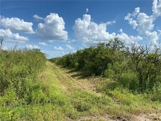 1st Road, Labelle, FL 33935 (MLS #220040487) :: RE/MAX Realty Team