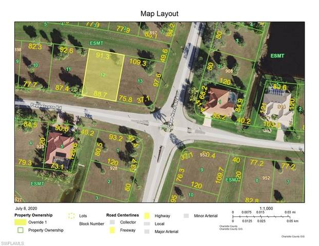 24284 Peppercorn Road, Punta Gorda, FL 33955 (MLS #220042593) :: Palm Paradise Real Estate