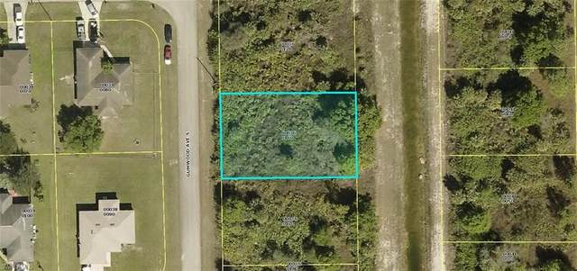 541 Gumwood Avenue S, Lehigh Acres, FL 33974 (MLS #220043554) :: Palm Paradise Real Estate