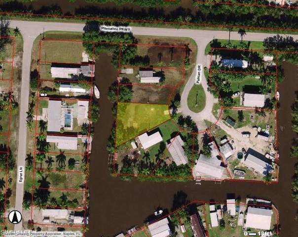 9 Pelican Drive, Everglades City, FL 34139 (MLS #220045020) :: Realty Group Of Southwest Florida