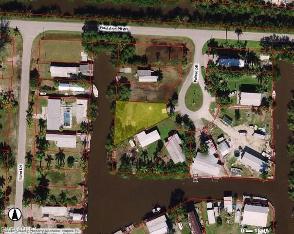 9 Pelican Drive, Everglades City, FL 34139 (MLS #220045020) :: Florida Homestar Team
