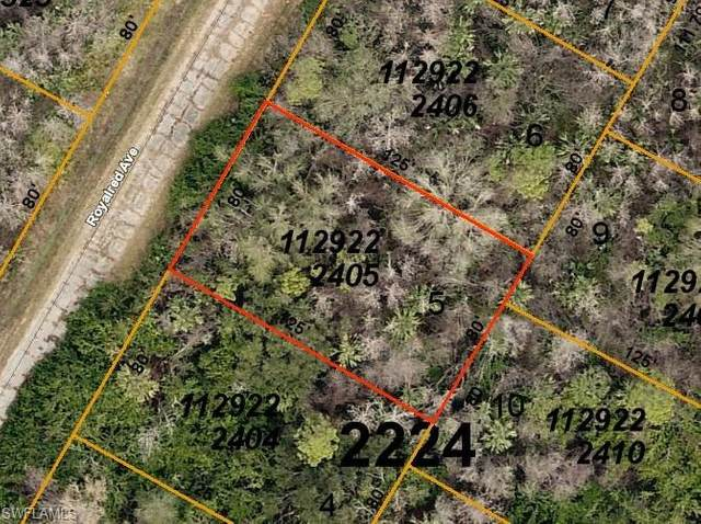 Royalred Avenue, North Port, FL 34288 (MLS #220046296) :: NextHome Advisors