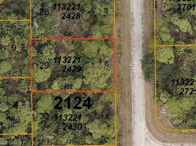 Julianna Street, North Port, FL 34288 (MLS #220046298) :: NextHome Advisors