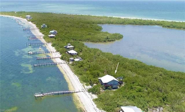 11340 Pejuan Shores On Cayo Costa, Cayo Costa, FL 33924 (#220047539) :: The Dellatorè Real Estate Group