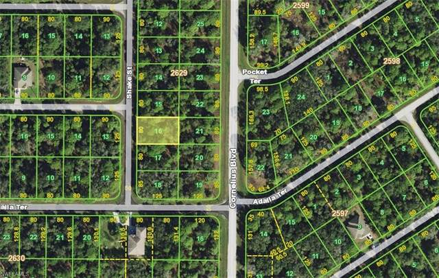 1348 Shake Street, Port Charlotte, FL 33953 (MLS #220049114) :: RE/MAX Realty Group