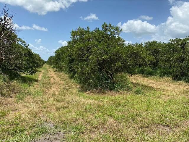 6th Rd. (Sears Rd. in Records Road, Labelle, FL 33935 (MLS #220049652) :: Clausen Properties, Inc.