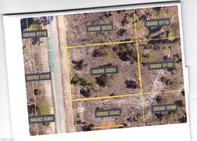 847 Andover Avenue, Lehigh Acres, FL 33974 (MLS #220050406) :: Premier Home Experts