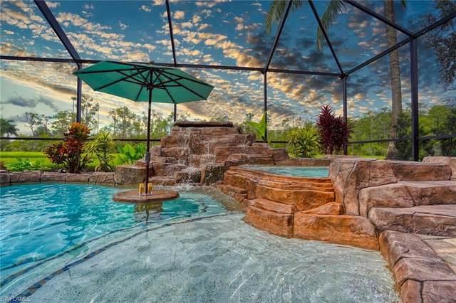 9178 River Otter Drive, Fort Myers, FL 33912 (MLS #220053819) :: Kris Asquith's Diamond Coastal Group