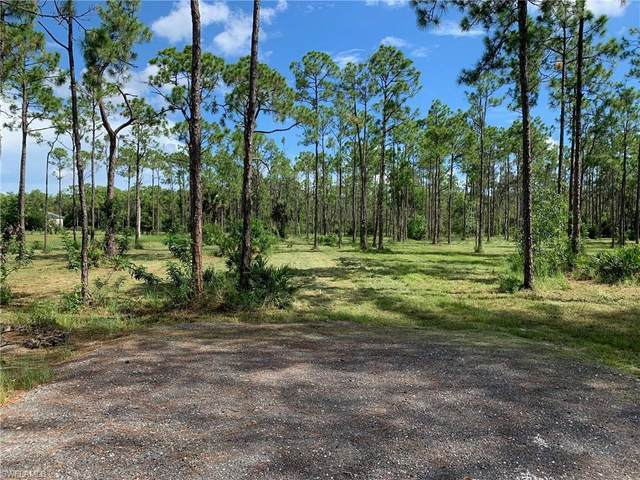 9351 Penzance Boulevard, Fort Myers, FL 33912 (#220053821) :: The Dellatorè Real Estate Group