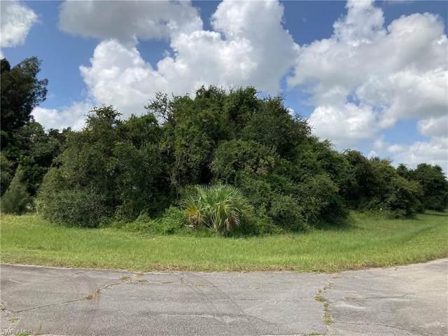 Pluto Court, Labelle, FL 33935 (MLS #220056658) :: Florida Homestar Team